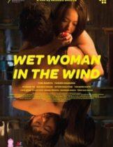 Wet Woman in The Wind (2016) ผู้หญิงเปียกในสายลม (Soundtrack ซับไทย)