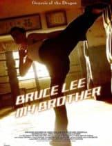 Bruce Lee My Brother (2010) บรู๊ซ ลี เตะแรกลั่นโลก