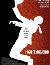 Hight Flying Bird
