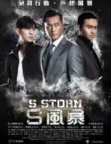 S Storm (2016) คนคมโค่นพายุ