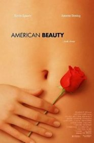 American Beauty อเมริกัน บิวตี้