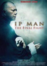Ip Man The Final Fight หมัดสุดท้าย ปรมาจารย์ยิปมัน 2013